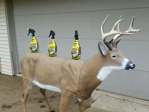 Most realistic deer decoy I've ever seen, and Scentblocker spray...we are ready for November!